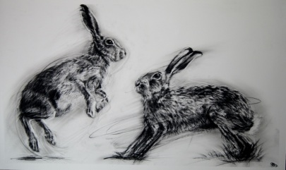 Sparring Hares