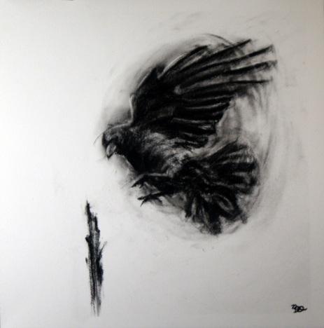 Decending Crow